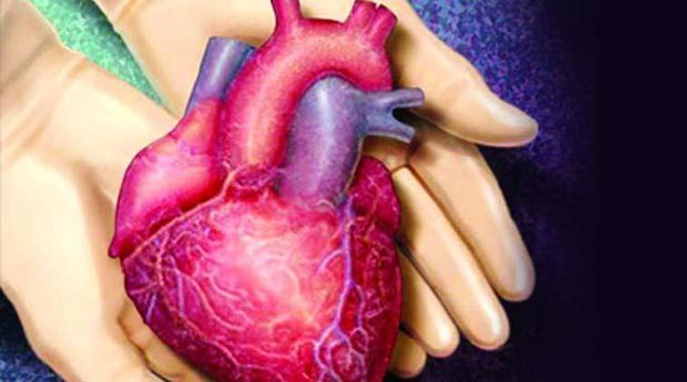 Organ Donation – Do Defaults Save Lives?